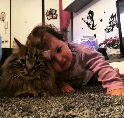 女の子を守る猫12