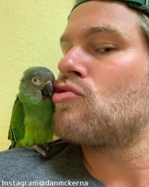 鳥にキスしたら…愛情表現が返ってきたっ!01