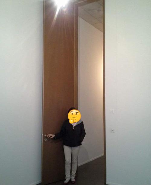 このドアはめちゃくちゃ高い(長い)05