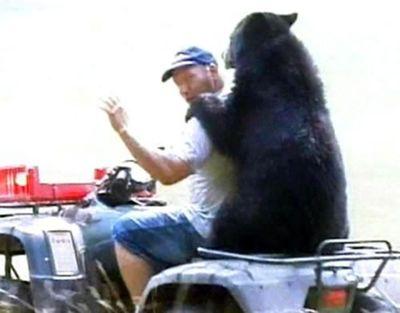 クマが釣られたり戦ったりあられもない格好したりする画像04
