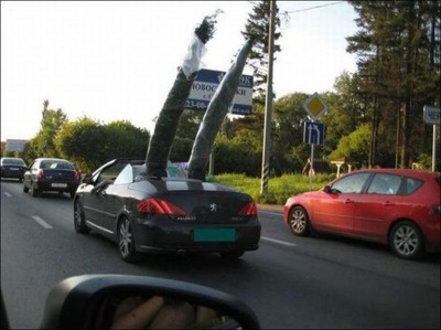変な車14