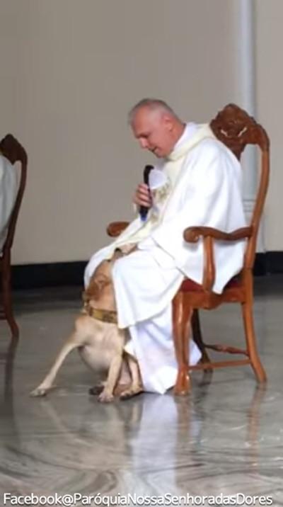 礼拝中に犬が乱入!神父の対応が話題に01