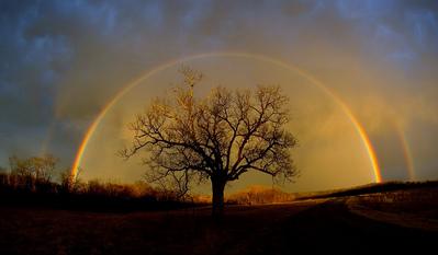 小道に現れた2重の虹ゲート06