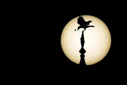 金星の太陽通過観測のお知らせ08