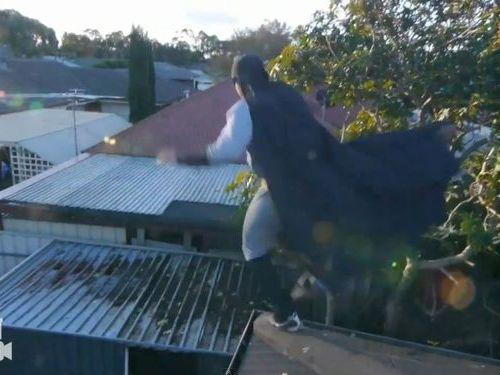バットマンのびっくりジャンプ00