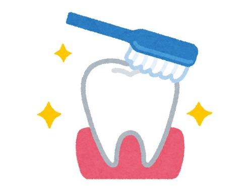 歯医者に質問
