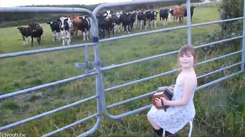 少女が演奏してたら可愛い観客が04