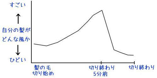 ヘアカットのグラフ