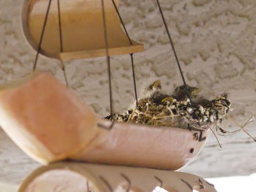 ウインドチャイムに鳥の巣02