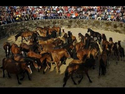 スペインの馬祭り00