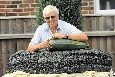 世界一大きな野菜や果物02
