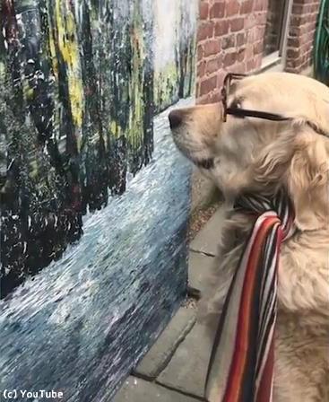 うちの犬は美術評論家03