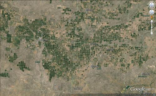 サウジアラビアの農場05