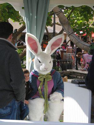 嫌なウサギ着ぐるみ03
