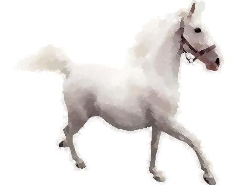 馬に乗りながら携帯を使用しチケットを切られる00