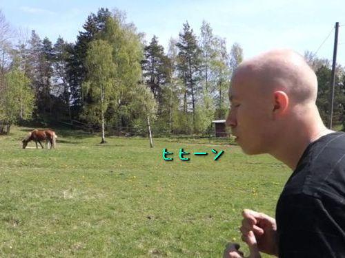 馬マスター00