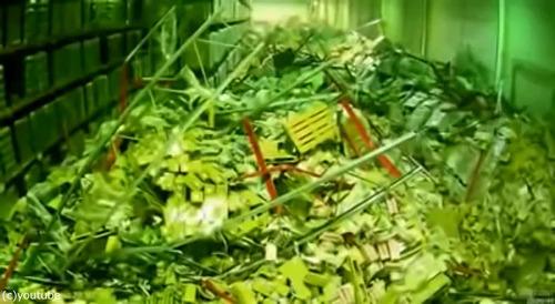 チーズ工場の棚が大崩れ05