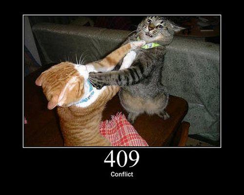 猫でHTTPステータスコード12