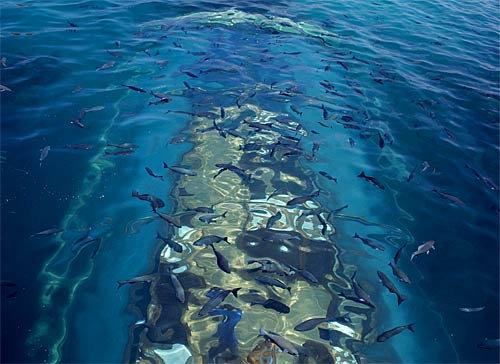 海に浮かぶ塊10