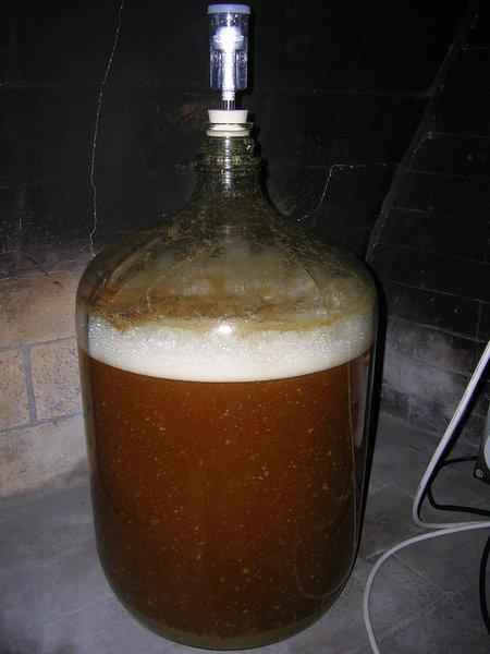 ボトルの中にエコシステム02