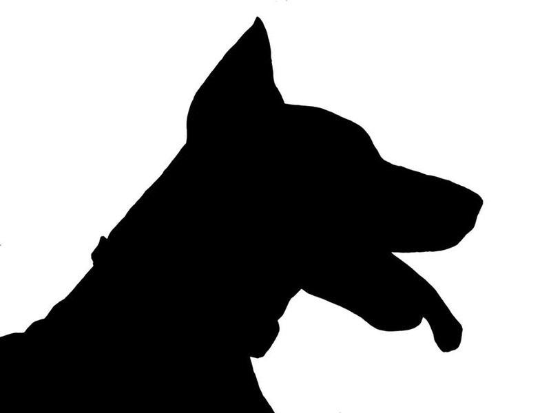 「犬がお金をくわえて肉の注文に来た、驚いた店主が後を追うと…」というお話