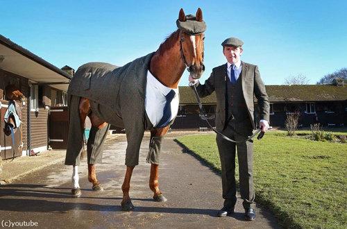 イギリスでは馬も紳士07