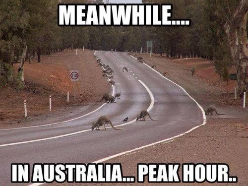 そのころオーストラリアでは09