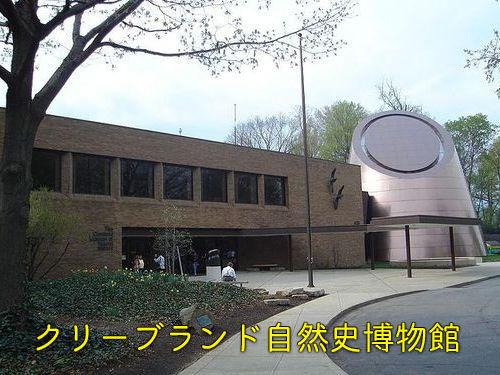 博物館のユーモア00