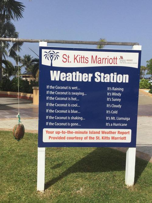 天気をココナッツで知らせるホテル01