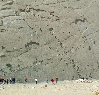 ボリビアの恐竜の足跡02