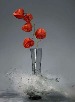 生け花と花瓶─破壊の美学14