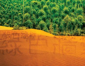 アフリカの森林版、万里の長城03