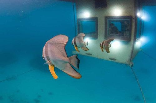 海底ホテル07