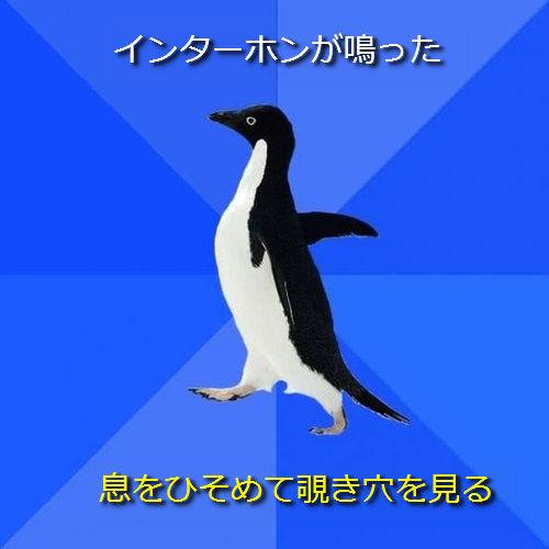 社交性のないペンギン09●インターホンが鳴った ─ 息をひそめて覗き穴を見る