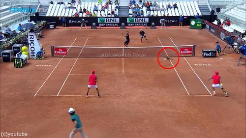 テニスの試合に猫が乱入01
