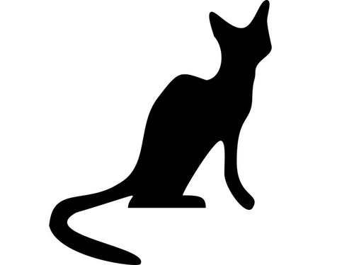 猫の隠れ家00