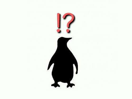 ペンギンにルームランナーをさせた研究00