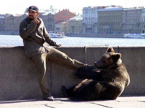 ロシアのクマ09