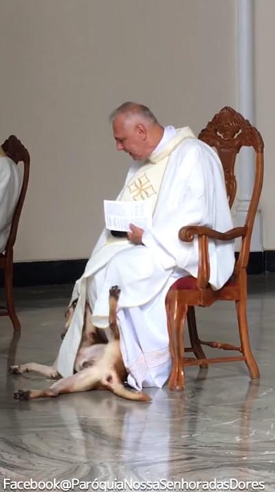 礼拝中に犬が乱入!神父の対応が話題に03