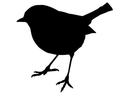 ナデナデしてほしい小鳥が…手にすり寄ってくる