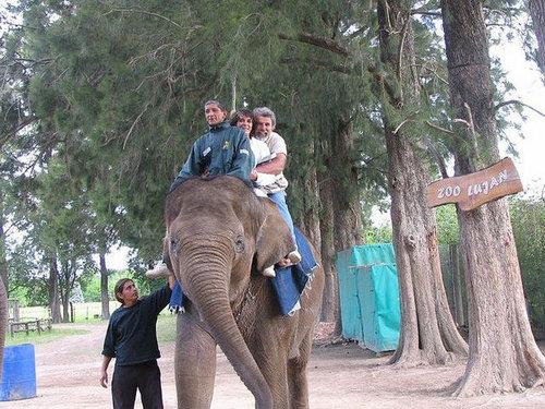 ルハン動物園06