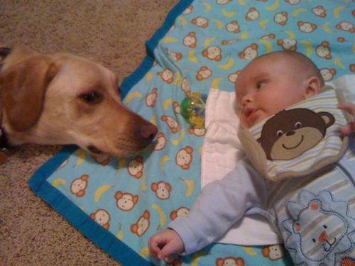息子と愛犬の友情00