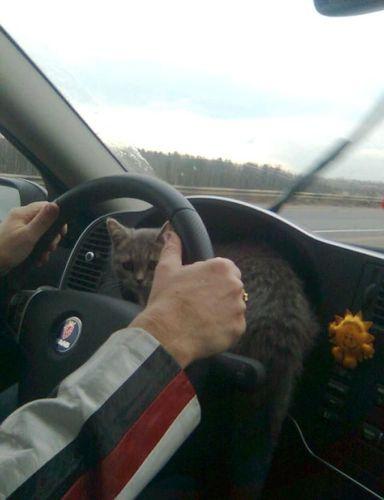 ロシアの危険な運転06