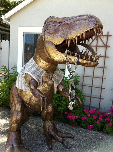 庭にいる恐竜02