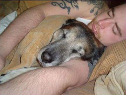 ペットと睡眠06