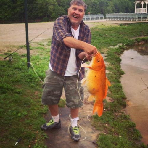 金魚が飼えなくなって人々が湖に放したその結果04