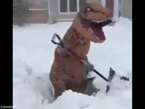 恐竜雪かき02