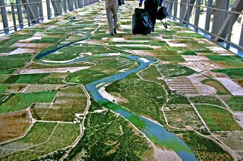 航空写真のカーペット02