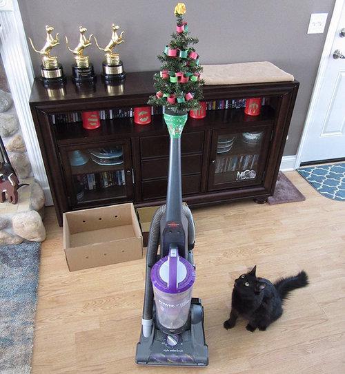 ペットからクリスマスツリーを守る戦い06