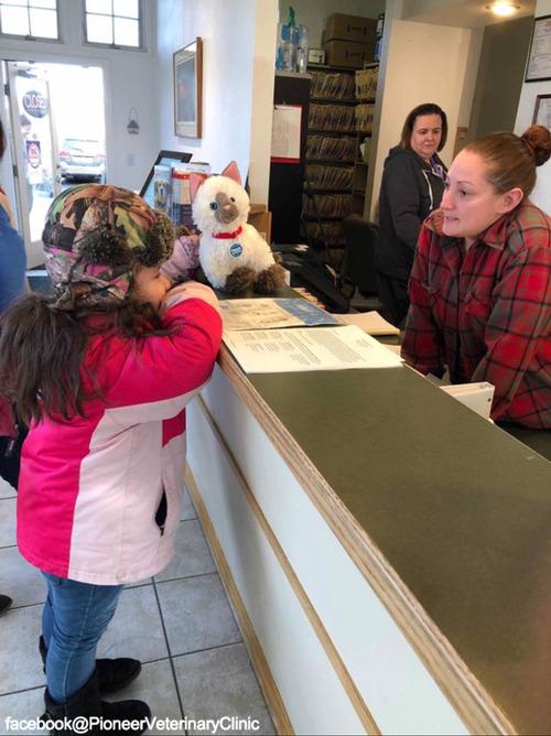 少女が動物病院に猫のぬいぐるみの診察を依頼…獣医の対応に感動02